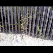 Miami Beach Drift Fence