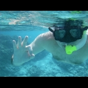 Snorkeling is Okay in St. Thomas